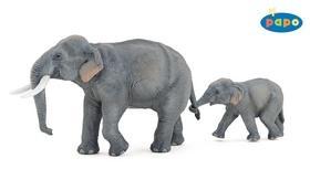 Kniha: Slon indickýautor neuvedený