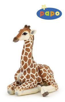 Kniha: Ležící žirafa mláděautor neuvedený