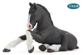 Kniha: Shirský kůň černý hříběautor neuvedený
