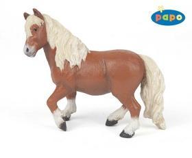 Kniha: Pony shetlandskýautor neuvedený