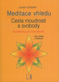 Meditace vhledu
