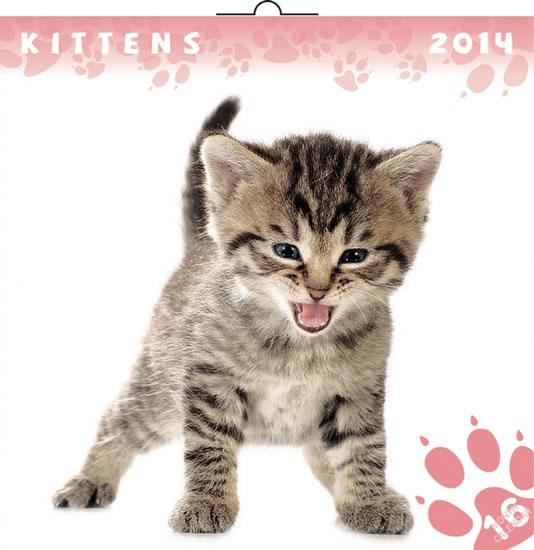 Kniha: Kalendář 2014 - Koťata - nástěnný poznámkový (ČES, SLO, MAĎ, POL, RUS, ANG)autor neuvedený