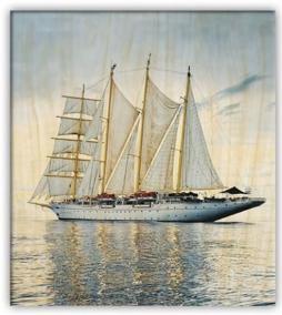 Obraz: Sailing (450x520)