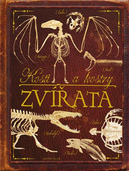 Kniha: Kosti a kostry: Zvířataautor neuvedený