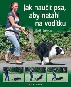 Jak naučit psa, aby netáhl na vodítku - Rady teriéra Bertíka