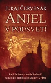 Anjel v podsvetí (Barbarič a Stein 7)