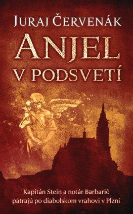 Kniha: Anjel v podsvetí (Barbarič a Stein 7)