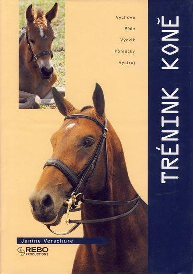 Trénink koně