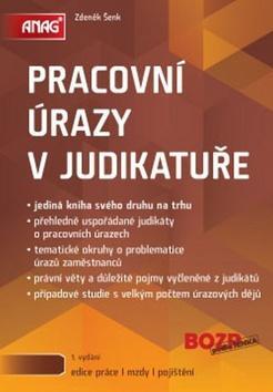 Kniha: Pracovní úrazy v judikatuře - Zdeněk Šenk