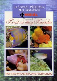 Korálové útesy v Karibiku