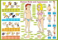 Karta -Human Body and Appearance- - Lids